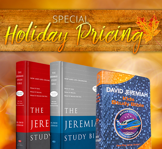 Special Holiday Pricing - The Ideal-Life Changing Christmas Gift