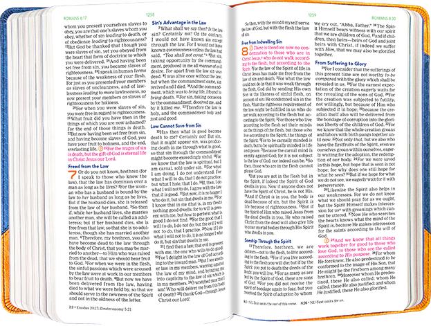 100 Bible Blasts