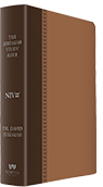 Jeremiah Study Bible - Brown Soft-Touch Leather Luxe (NIV)