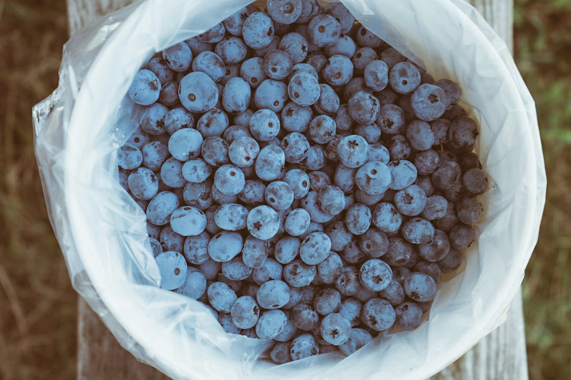 blueberries healthy snack berries