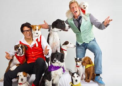 Noah and a group of dogs for the show Noah and his best friends