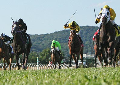 Live racing at the Mountaineer