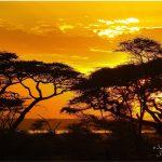 TanzaniaSunset2