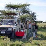 African Safari, Land Rover
