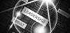 Leadership Expert