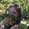 High Altitude Gardening Blog By Kate Miller