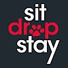 Sit Drop Stay | Dog Behaviour and Training