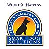 Dog Training Blogger