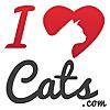 iHeartCats.com – All Cats Matter ™