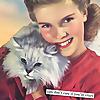 Crazy Cat Lady Magazine