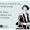 The Sarcastic English Teacher