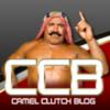 Camel Clutch Blog