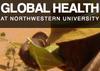 Global Health Portal | Northwestern University