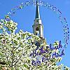 River Road Church, Baptist, Richmond,VA   Pastor's Blog