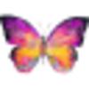 Lupus Foundation of Southern Arizona | News