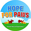 Hope For Paws | Youtube