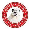 Companion Animal Protection Society Blog
