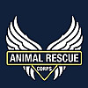 Animal Rescue Corps | Youtube