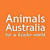 Animals Australia | Youtube