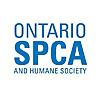 Ontario SPCA Blog