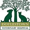 Doylestown Veterinary Hospital
