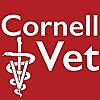 Cornell University College of Veterinary Medicine   Youtube