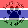 Vet Clinic Gambia   Youtube
