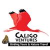 The Caligo Ventures Blog