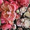 Camelback Flowershop - Flowershop Blog