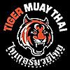 Tiger Muay Thai & MMA - News & Blog