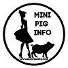 Mini Pig Info | Dear Pig Whisperers Blog