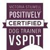 Life Skills Dog Training