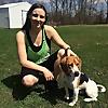 Greenville Dog Training