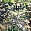 Englewood Lawn & Landscapes LLC | Lawn & Landscapes Blog
