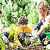 My Gardening Network » Vegetable Gardening
