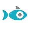 The Snapfish - Fresh and easy photo inspiration!