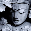 The Zen Mama's Blog