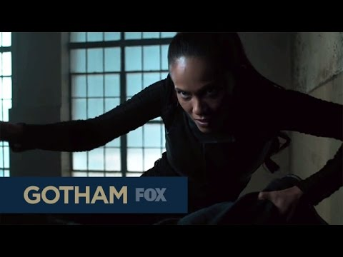 Promo for the Gotham Fall Finale
