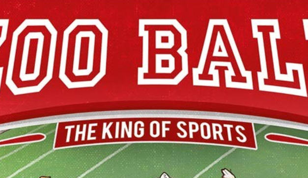 Game Review – Zoo Ball: The King of Sports