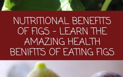 Nutritional Benefits Of Figs
