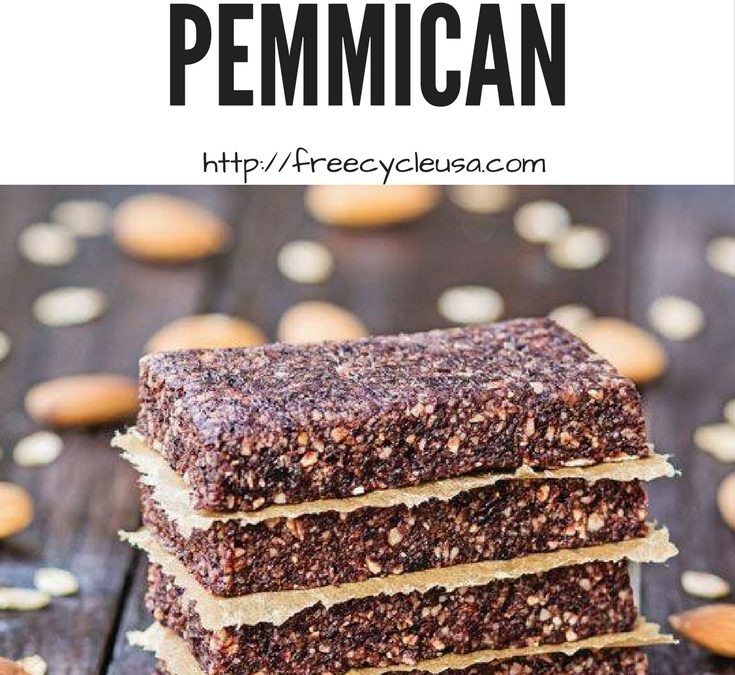How To Make Pemmican Survival Super Food