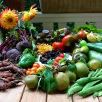 Growing Paleo Vegetables Made Easy