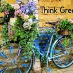 Green Living Do's and Don'ts