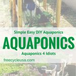 Aquaponics Garden Ideas