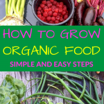 How to Grow Healthy Organic Food