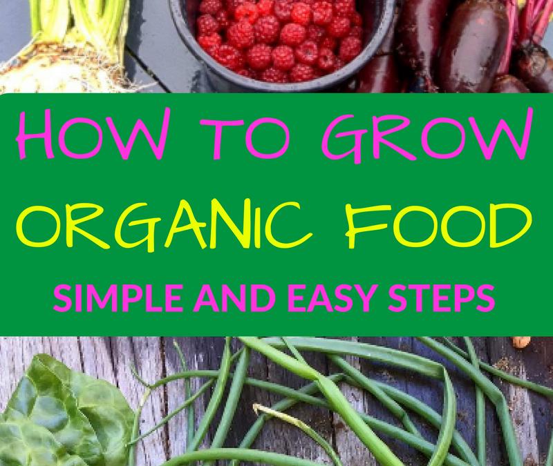 How to Grow Healthy Organic Food