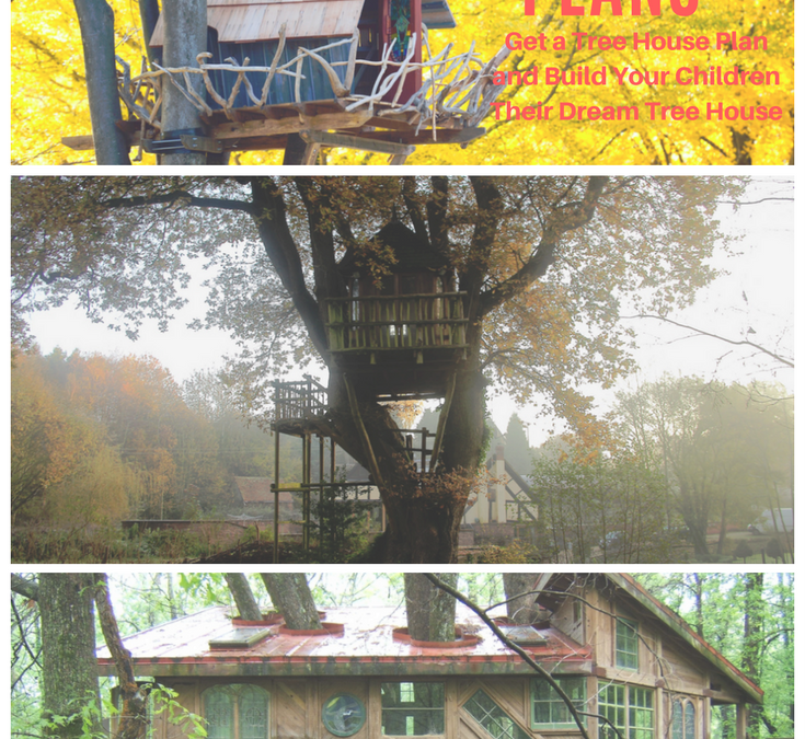 Get a tree house plan and build your children their dream for Build dream home online free