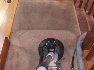 cleaning carpet at Smithville Chamber of Commerce