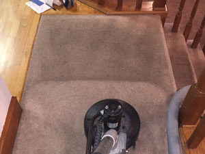 hot water extraction rug cleaning