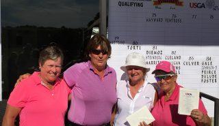 Senior Amateur Sectional Qualifier